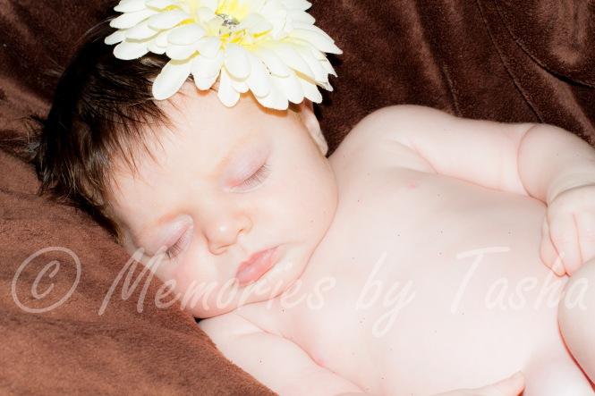 north carolina - photographer - newborn-2
