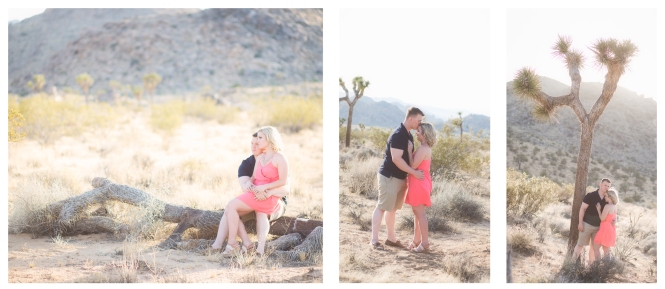 Twentynine Palms Couple's Photography - Yucca Valley Couple's Photography - Joshua Tree Couple's Photography - Leins